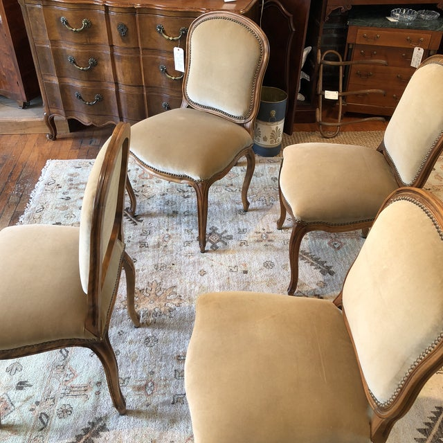 Louis XV Style Walnut Dining Chairs - Set of 4 - Image 4 of 9