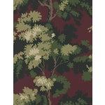 Sample, Scalamandre Raphael, Dark Red/Green/Lh Wallpaper