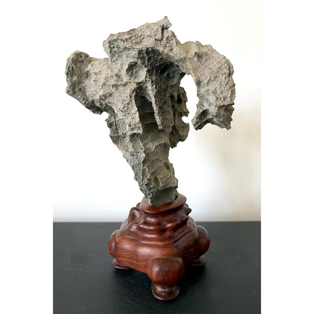 Yingde stone, harvested from Guangdong province in Southern China, is one of the four famous types of Chinese viewing...