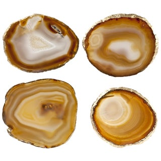 Agate Slice Coasters - Set of 4 For Sale