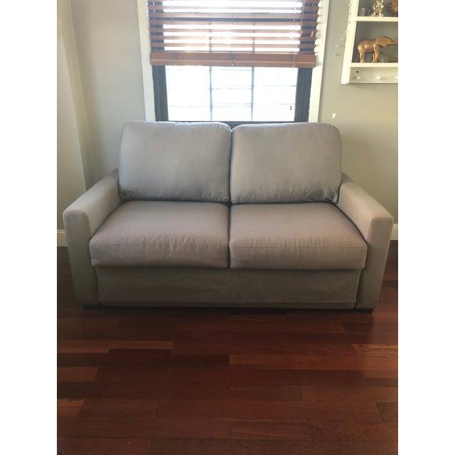 Room Board Sleeper Sofa Chairish