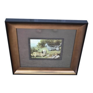 Framed Print of Terriers