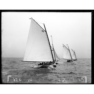 Four Sailboats - Print of Photo of Sailboats From Late 1800's