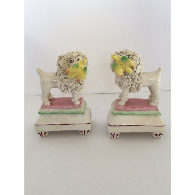 Rare antique English Staffordshire poodles on plinth holding birds in their mouths. Beautiful colors with almost sherbet...