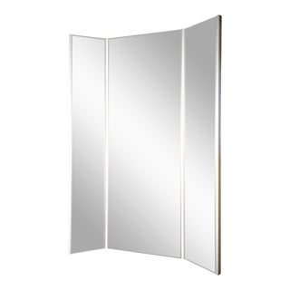 Anti Body Dysmorphia mirror For Sale