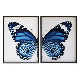 "Navy Butterfly - 38"" X 25"" For Sale"