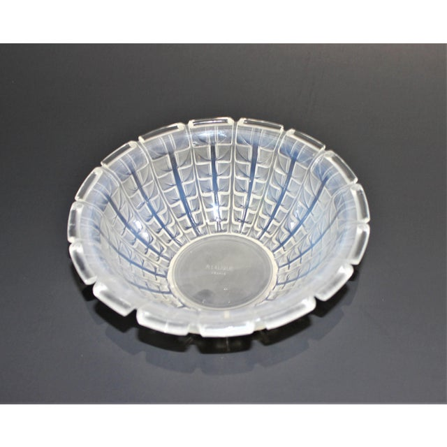 1920s R. Lalique 1928 Acacia Pattern Opalescent Art Deco Crystal Bowl For Sale - Image 5 of 12
