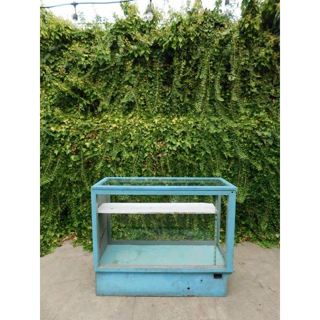 Vintage Botanical Blue Display Case For Sale - Image 4 of 7