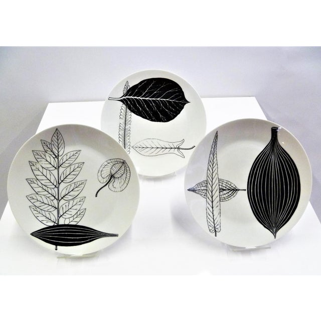 1950s Mid-Century Fornasetti Italy Black and White Foliage or Foglie Plates - Set of 3 For Sale - Image 13 of 13