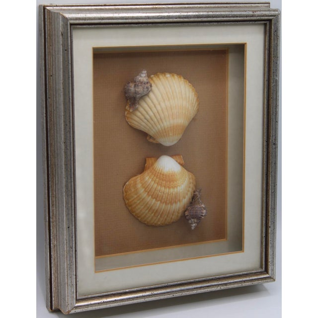 1990s Nautical Art Framed Seashell Collage For Sale - Image 4 of 6