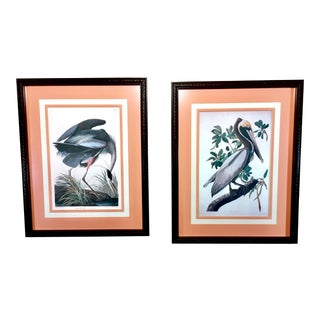 Vintage Audubon Seabird Prints, Custom Framed - A Pair