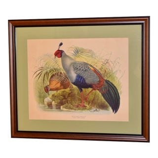 Mid-20th Century Framed Lithograph For Sale