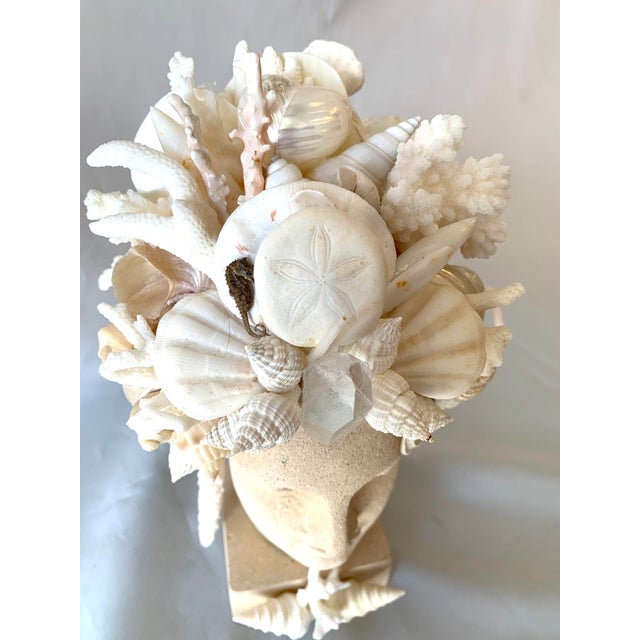 2020s Hygiea Shell Encrusted Head For Sale - Image 5 of 9