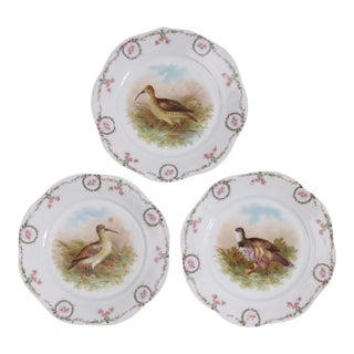 Vintage Bavarian Pheasant Plates, Set of 3 For Sale