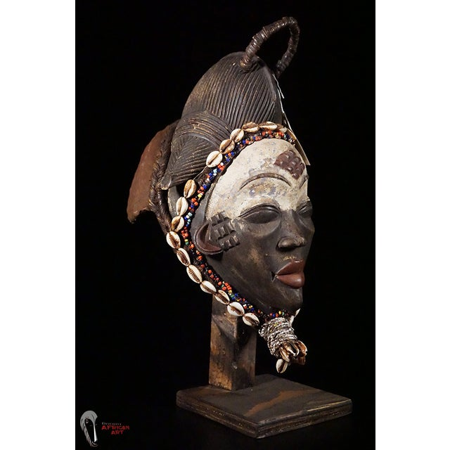 Punu African Tribal Mask - Image 10 of 10