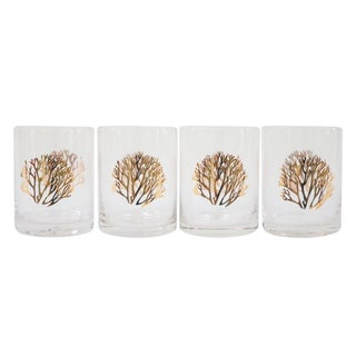 Gold Coral Cocktail Glasses - Set of 4 For Sale