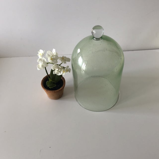 Early 21st Century Green Terrarium Dome With Silk White Flowers For Sale - Image 5 of 5