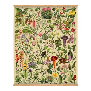 "Antique 'Spanish Botanical 2"" Wall Hanging"