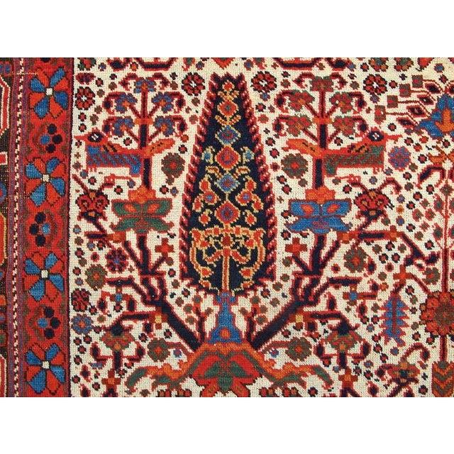 Islamic Persian Afshar Tribal Rug For Sale - Image 3 of 8