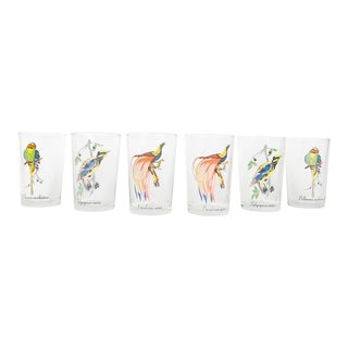 Tropical Bird Cocktail or Juice Glasses - Set of 6 For Sale