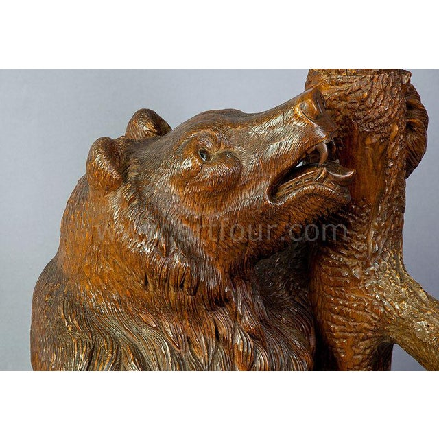 Carved Wood Bear Hallstand, Swiss Brienz Ca. 1900 For Sale - Image 4 of 5
