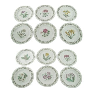 Vintage Royal Worcester Williamson Enameled Porcelain Botanical Plates - Set of 12 For Sale