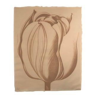 1976 Lowell Nesbitt Peach Tulip Lithograph Print For Sale