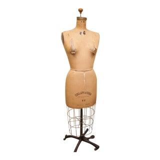 Vintage Dress Form Jr Bauman For Sale