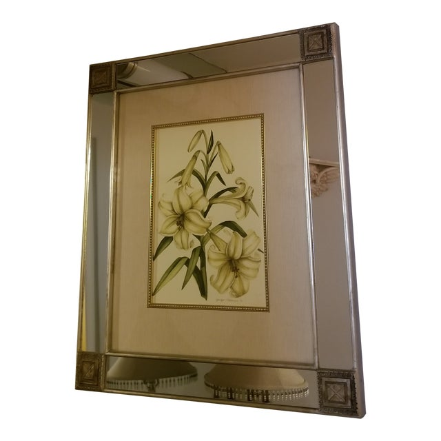 Mirror With Framed Botanical Print For Sale