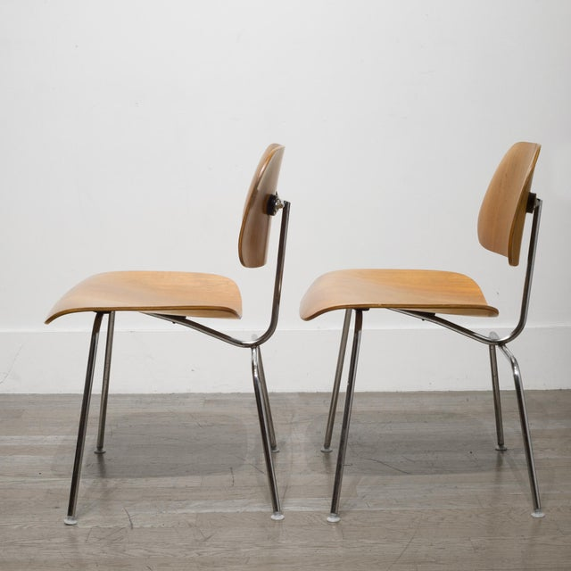 Early Ray and Charles Eames for Herman Miller Dcm Chairs, Circa 1950- Price Is Per Chair For Sale - Image 11 of 13