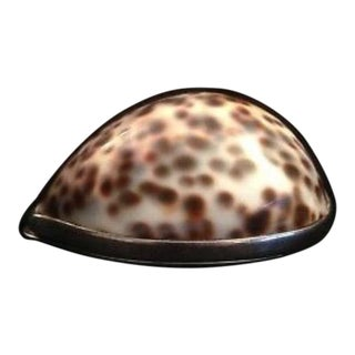 1980s Tiffany Sterling Silver Cowrie Seashell Snuff Box For Sale
