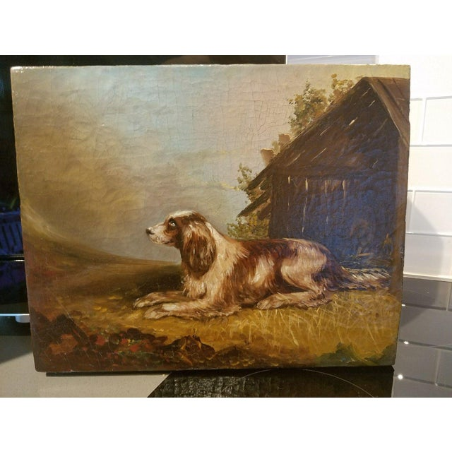 Oil Paint 19th C. English Springer Spaniel Dog Painting For Sale - Image 7 of 7