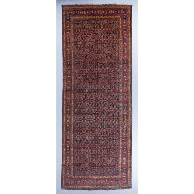 Senneh Gallery Carpet For Sale - Image 4 of 4