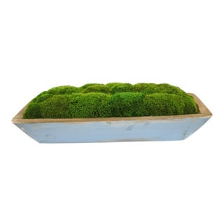 Blue Painted Wooden Bowl With Preserved Moss