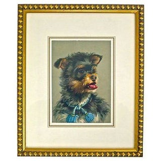 Vintage Framed Terrier Dog Engraving For Sale