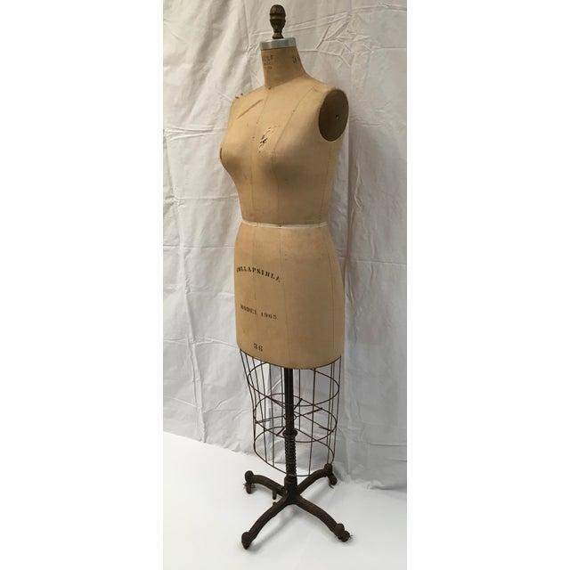 Shabby Chic Vintage Wolf Dressmaker's Mannequin For Sale - Image 3 of 11