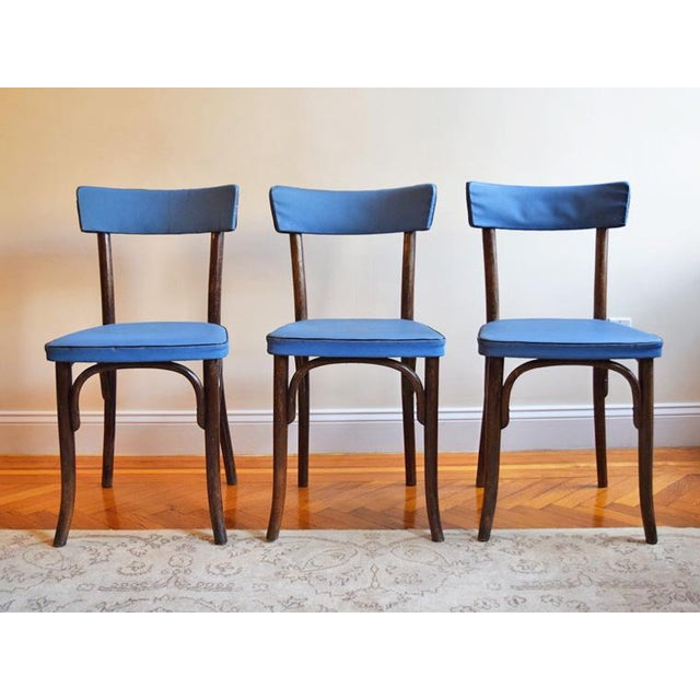 1950s Vintage Thonet Cafe Chairs- Set of 3 For Sale - Image 9 of 9