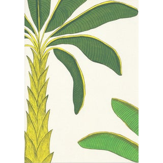 Tropical Wallpaper in Porcelain Earth White, Sample For Sale