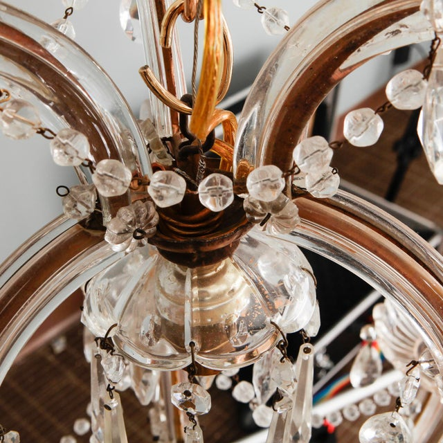 Heavily Beaded Small Six Light Maria Theresa Chandelier For Sale - Image 9 of 11