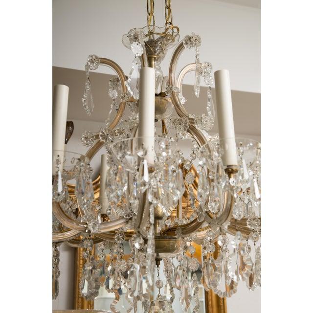Vintage Maria Theresa Twelve-Light Chandelier For Sale - Image 4 of 11