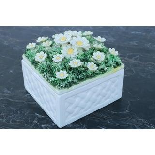 Luigi Zortea Bassano Daisy Floral Box Preview