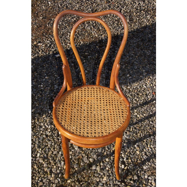 1940s Antique Thonet-Style Bentwood Heavy Cane Woven Seat Parlor Bistro Chairs - Set of 4 For Sale - Image 6 of 13
