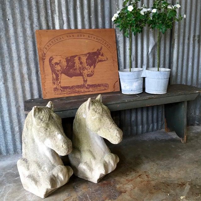 Antique Concrete Horse Head For Sale - Image 9 of 11
