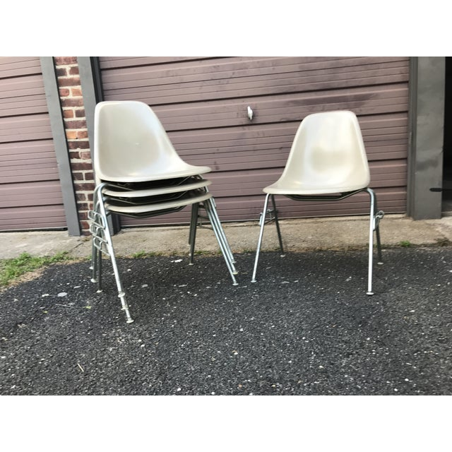 Eight groovy side chairs designed by Charles Eames. In good vintage condition, with some scuff marks from stacking. Could...