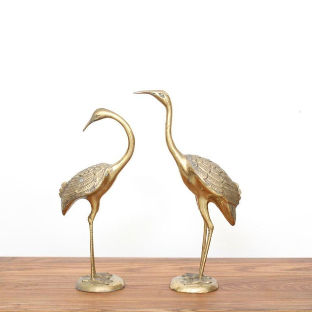 1970s Pair of Extraordinary Huge Brass Flamingos or Cranes For Sale - Image 5 of 5