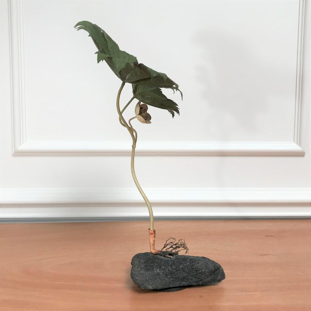 Contemporary 1970s Vintage Botanical Still Life Painted Metal & Stone Model by Robert Meier For Sale - Image 3 of 9