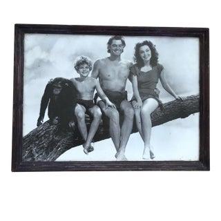 """Me Tarzan You Jane"" Framed Hollywood Photo For Sale"