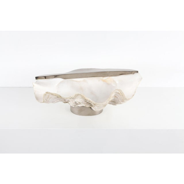 Hollywood Regency Mounted Giant Clam Shell in the Style of Gabrielle Crespi - 1950s For Sale - Image 3 of 9