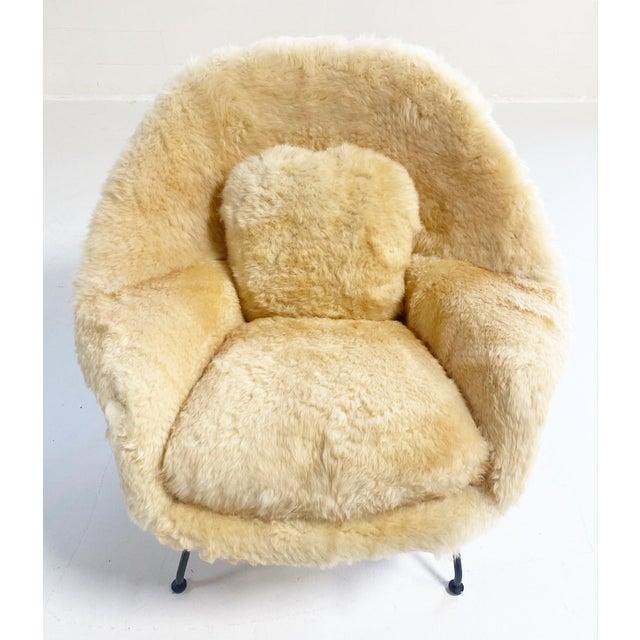 Metal Vintage Eero Saarinen Womb Chair and Ottoman, Restored in Texas Sheepskin For Sale - Image 7 of 8
