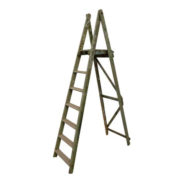 1940s Vintage Garden Ladder For Sale